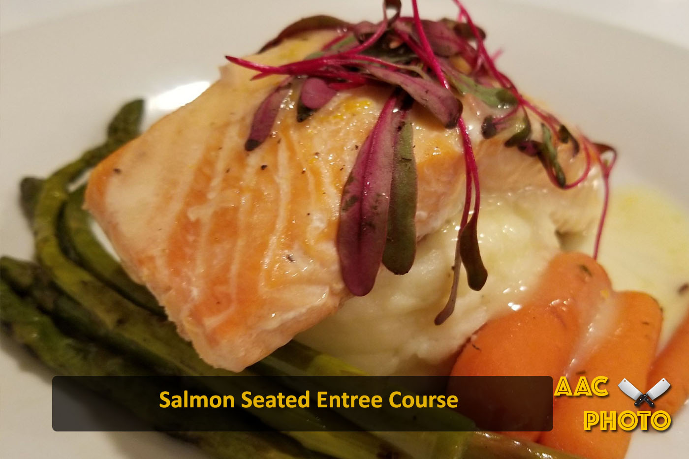 Seated Entree Salmon